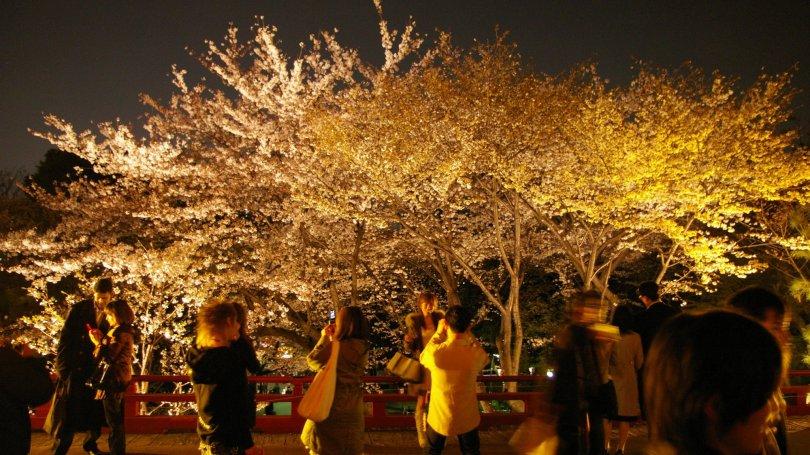Kiyomizu Kannon bei Nacht