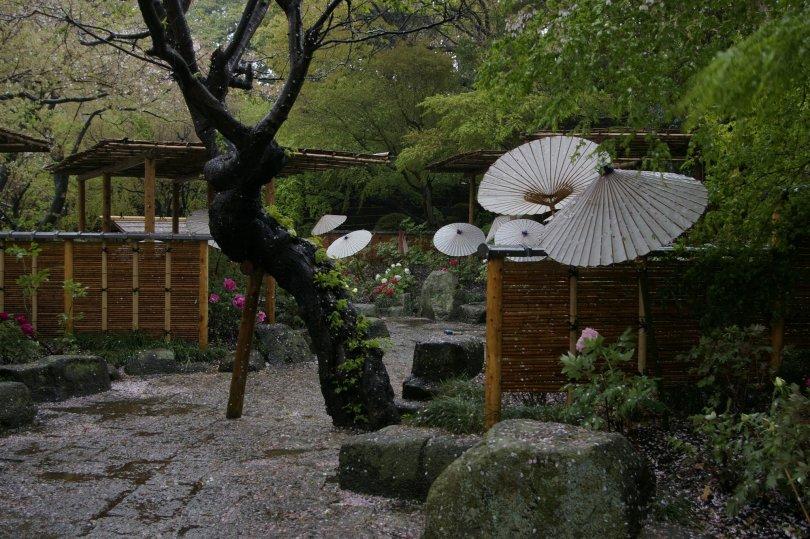 Garten in Kamakura