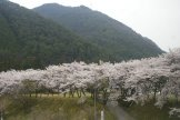 Fahrt nach Nikko