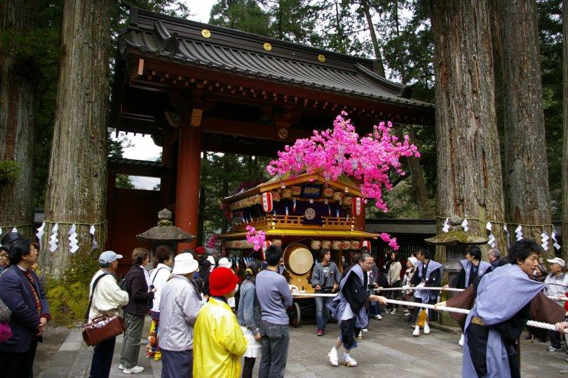 Nikko Matsuri - Torii