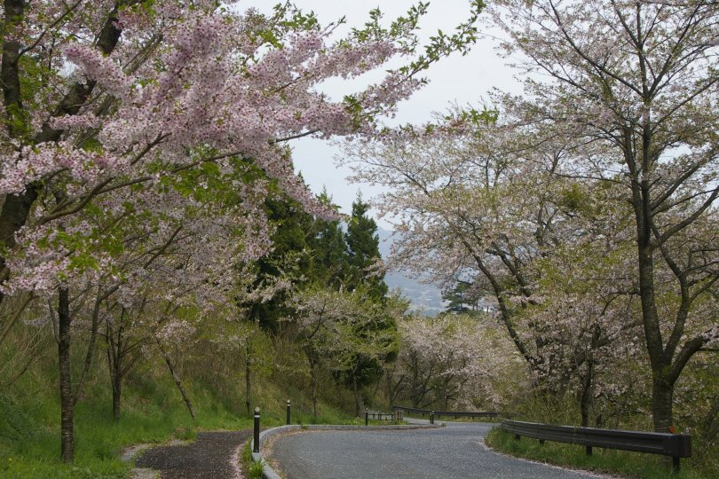 Hiraizumi - Wanderung