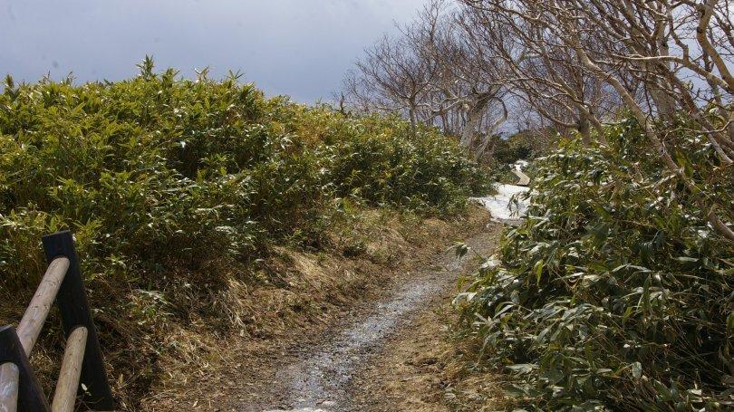 Iwate - Gipfelpfad