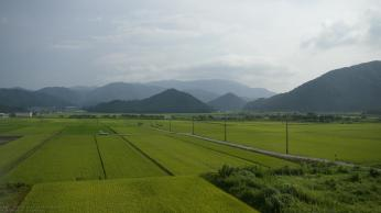 Landschaft vom Zug aus fotografiert