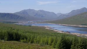 Schottland303