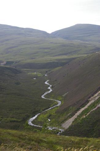 Schottland603