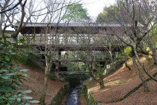 Tofuku-ji Bridge