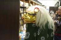 Drache in Buchhandlung