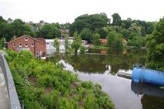 geflutete Fläche