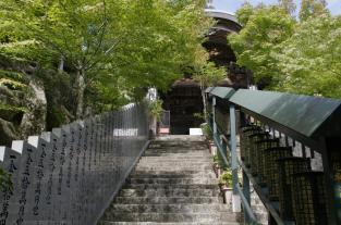 Miyajima2014 327