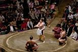 Sumo2014 140