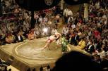 Sumo2014 194