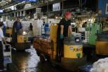 Tsukiji2014 022
