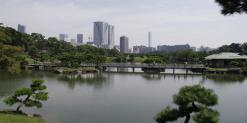 Tokyo22014 481